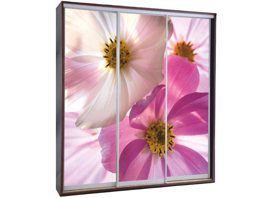 шкаф купе с фотопечатью цветы 10043 за 18000 руб